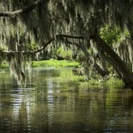 River Parishes Tourism Commission travel sites: Matherne's Airboat Rides, Destrehan Plantation, Evergreen Plantation